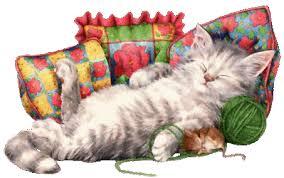"""Résultat de recherche d'images pour """"gifs chats"""""""