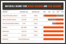 Halibut Weight Chart Fish Chart And Limits At Waterfall Resort Alaska