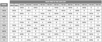Cut Capo Chord Chart Guitar Capos Cut Out The Bullshit Nowshoing Medium