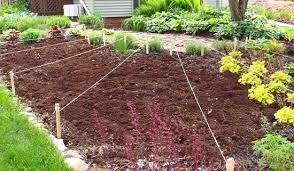 best soil for vegetable garden. best soil for veggie garden brilliant gardening vegetables vegetable g