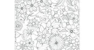 Secret Garden Coloring Book App Coloring Book Fun Acessorizame