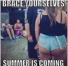 Brace yourselfs summer is coming meme - Meme Collection via Relatably.com
