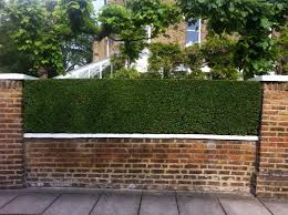 Small Picture Image result for brick walls victorian hedge Front garden