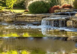 Garden Ponds Designs Adorable Pond Lake Water Garden Supplies Pond Algae Control Pond Dye