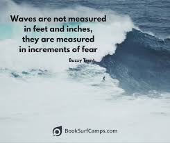 Waves Quotes Mesmerizing 48 Famous Surfing Quotes To Inspire You In 48 BookSurfCamps