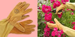 9 great gardening gloves for not getting your hands dirty