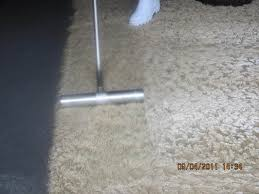 tampa bay rug cleaning ug cleaning in tampa