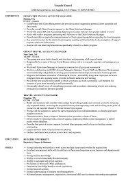 Account Manager Resume Sample Travel Account Manager Resume Samples Velvet Jobs 28