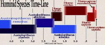 Human Evolution Timeline Chart 43 Expert Chart Human Evolution