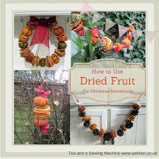 fruit christmas decorations. Contemporary Fruit How To Use Dried Fruit For Christmas Decorations Intended Fruit Decorations