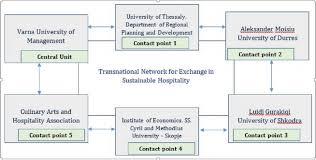 Umbrella Organization Chart Organization And Structure Helix
