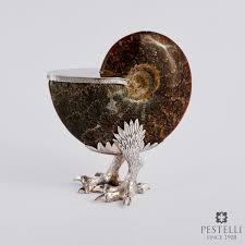 Ammonite - Pestelli Creazioni