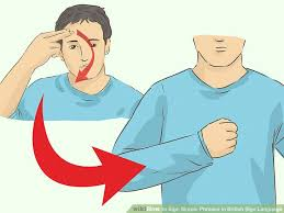 How To Sign Simple Phrases In British Sign Language 6 Steps