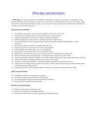Magnificent Office Boy Resume Pdf Contemporary Entry Level Resume