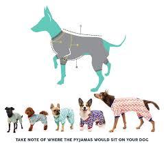 Wheaten Terrier Size Chart Abundant Dog Size Comparison Chart Irish Setter Weight Chart