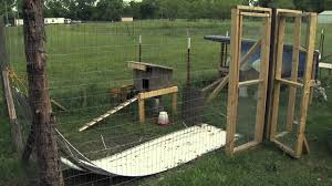 How To Make Money With Backyard Chickens  7 Ideas To Get Your How To Keep Backyard Chickens