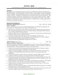 Executive Marketing Director Resume Briliant Marketing Manager Resume Executive Summary Email Marketing 10