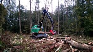 Neuson Forest 182HVT im Sumpf ; working within swamp - YouTube