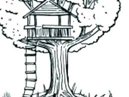 Jack And Coloring Pages Magic Tree House Printable Children Sheets