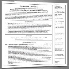Resume Navigation Resume Samples Joe Pro Resumes 53