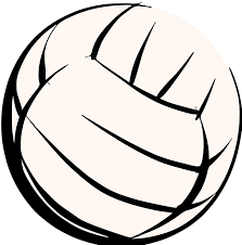 Image result for volleyballs