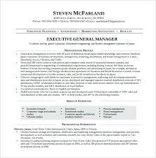 Seo Manager Resume Sample Resume Executive Resume Examples Pdf ...