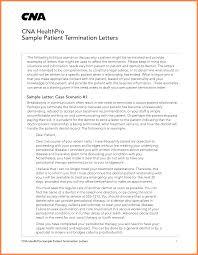 Nursing Assistant Job Description For Resume Resume Peppapp