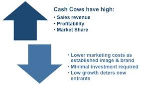 Image result for cash cows
