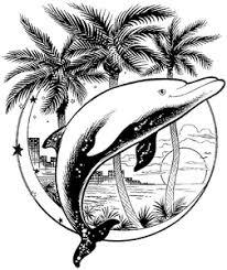 Dolfijnen Kleurplaten Animaatjesnl