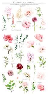watercolor botanical set by tl design on creativemarket flowers weddingideas invitation list