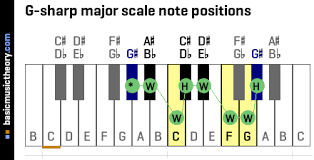 Piano Sharp Notes Chart Basicmusictheory Com G Sharp Major Scale