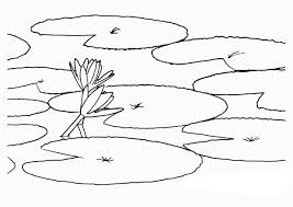 Small Picture How to Draw Lily Pad Coloring Page Color Luna