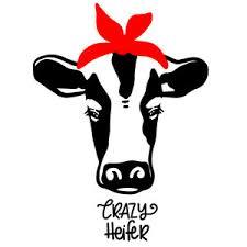 heifer silhouette. Perfect Heifer Intended Heifer Silhouette