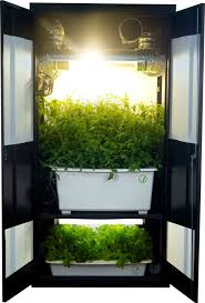 weed closet grow box i really like this system it is an awesome piece of