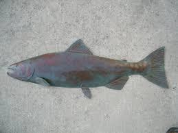 coho salmon metal fish wall art sculpture lodge cottage cabin