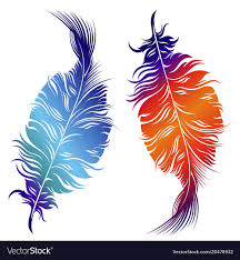 Feather Graphic Design Design Of Decorative Feathers