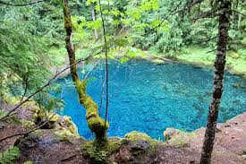 Tamolitch blue pool Depth Blue Lake 140 Blue Pool Fit Mom Healthy Kids Blue Pool Trail Tamolitch Falls Fit Mom Healthy Kids
