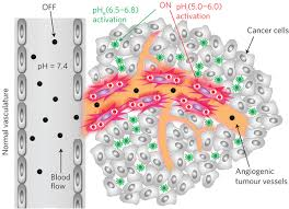 A nanoparticle-based strategy for the imaging of a broad range of ...