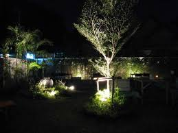backyard party lighting ideas. Backyard Party Lighting. Ideas For A Lighting Landscaping Fence Rhgogopapacom Picture Of Landscape Dallas G