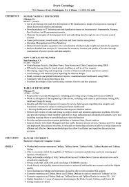 Tableau Sample Resumes Tableau Developer Resume Samples Velvet Jobs 1