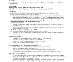 Examples Of Work Resumes Sarahepps Com