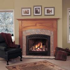 best 25 direct vent gas fireplace ideas on indoor gas fireplace stoves direct and napoleon gas fireplace