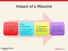 Resume Building Tips Cool Resume Building Tips
