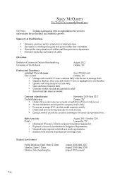 First Resume Sample Professional Job Resume Template