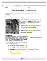 We did not find results for: Copy Of Natural Selection Gizmo Worksheet Name Date Student Exploration Natural Selection Vocabulary Biological Evolution Camouflage Industrial Course Hero