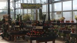 wilson s garden center 2018 you