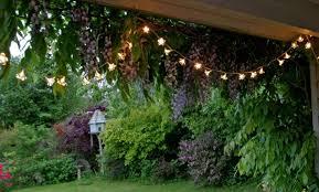Small Picture 5 cheap garden ideas Best gardening ideas on a budget