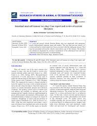 opinion essay about culture xenotransplantation