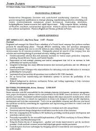 Writing Executive Summary Template Writing Executive Summary Template 412522700229 Executive Summary