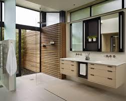 Small Picture Modern Bathroom Home Interior Design